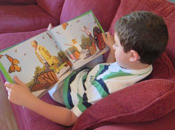 Wordless Picture Books - All About Reading