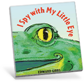 I Spy with My Little Eye book cover