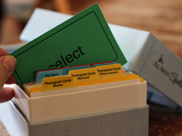 Review box with cards and dividers