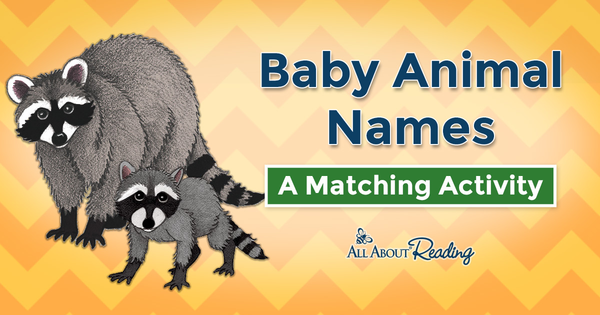 37++ Baby animals names enchanted learning ideas