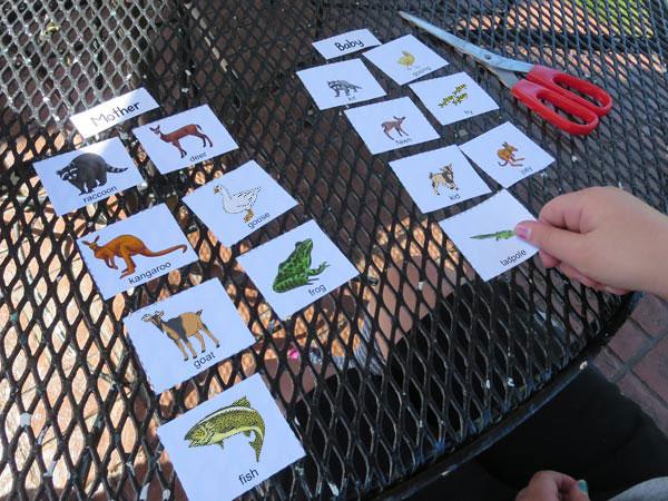 playing baby animal names matching game