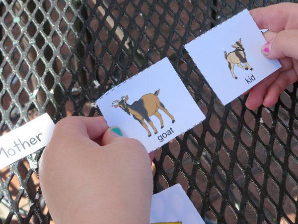 child baby animal matching game cards