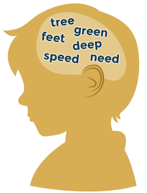 A child's head with EE vowel team words inside
