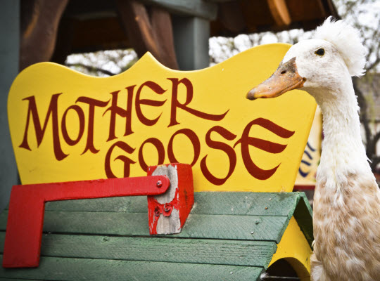 A goose standing next to a Mother Goose house