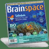 Brainspace magazine cover