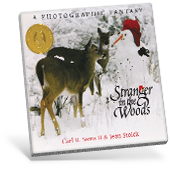 Stranger in the Woods book cover