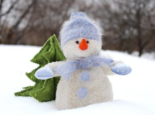 Picture Books about Winter - Picture Book Reviews from All About Reading