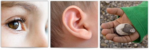 Image representing seeing, hearing, doing