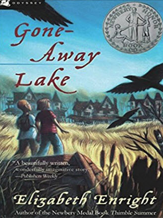 Book cover of Gone-Away Lake by Elizabeth Enright