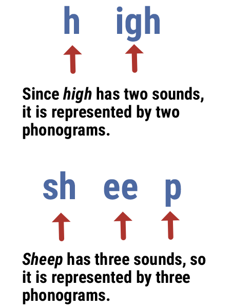 graphic showing that phonograms correspond with sounds