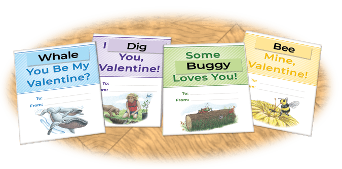 group of completed puns on valentine cards