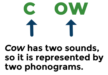 Image depicting how cow is split up in to two phonograms