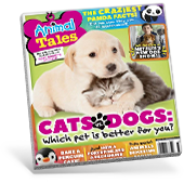 Animal Tales Magazine Cover